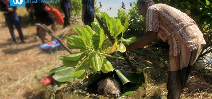 Tradisi Lomban di Pulau Nyamuk: Akhirnya Makan Ketupat