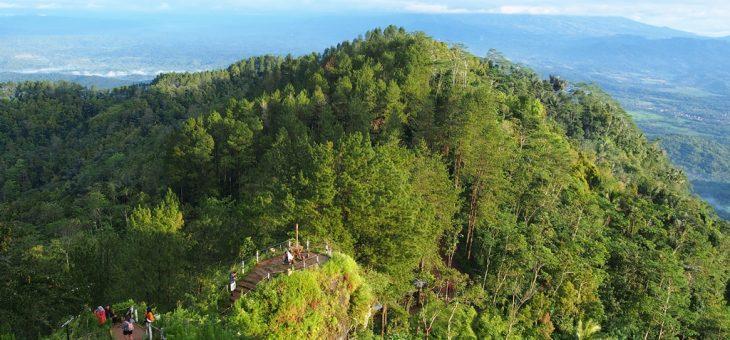 Harmoni Alam dan Desa Wisata Benowo