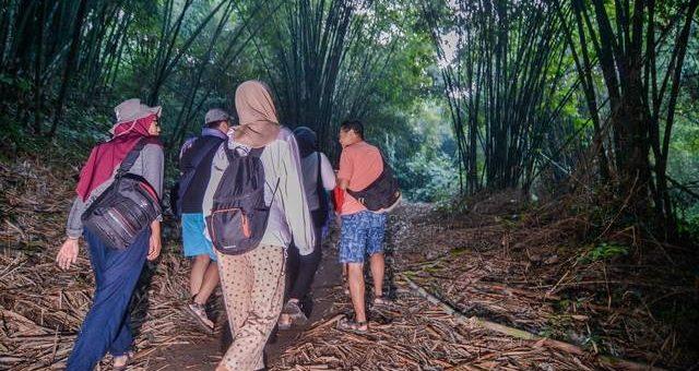 Inspirasi yang Datang dari Hutan Bambu Andeman, Sanankerto
