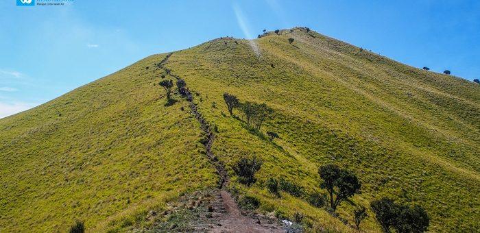 Catatan Pendaki Pemula: Ke Merbabu, Apa yang Kau Cari?