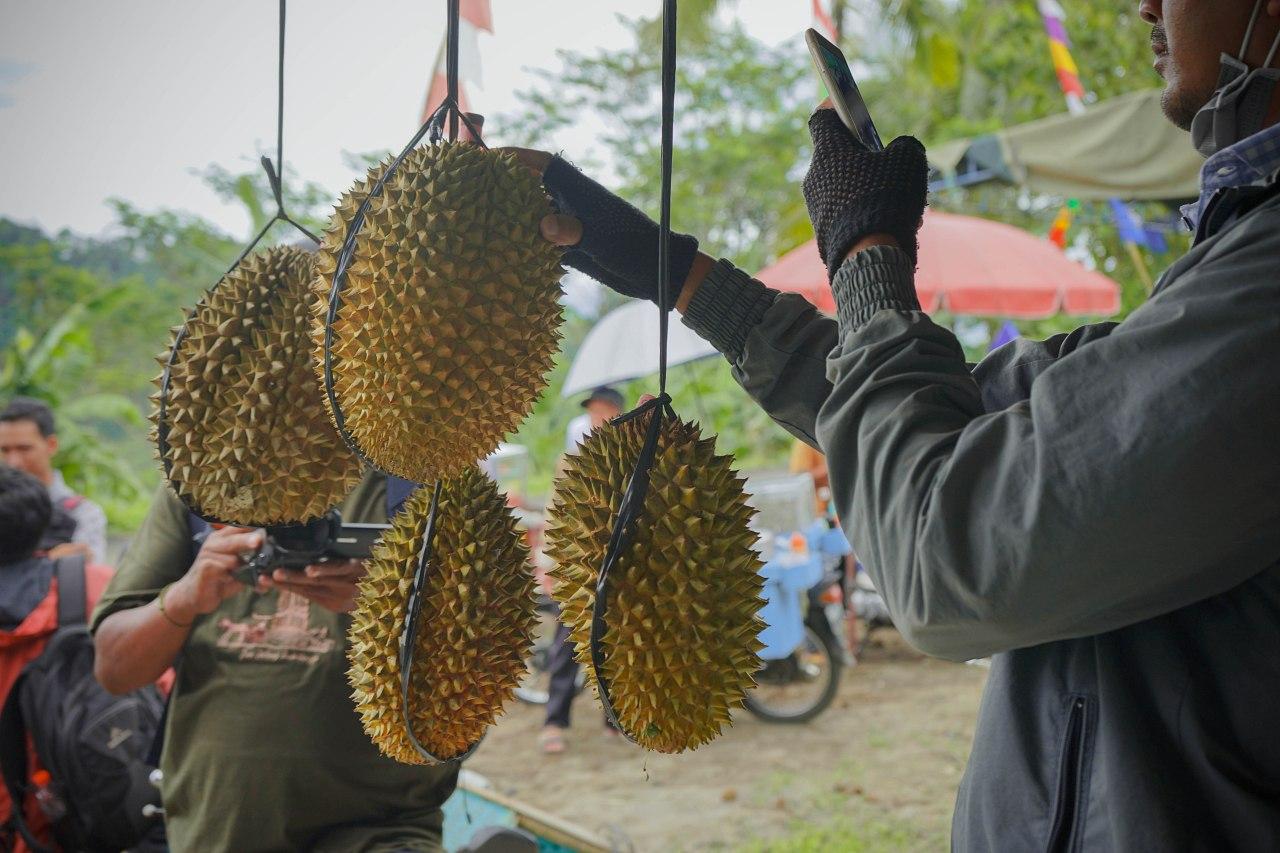 Festival Durian Menoreh